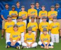 Hamilton Little League Teams Ready for Battle in District 12 Tournament